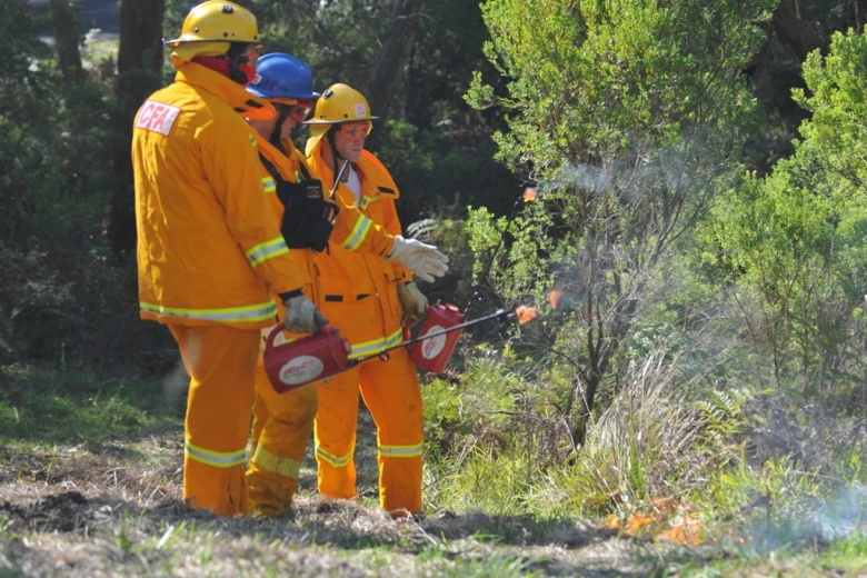 Bush Fire Management